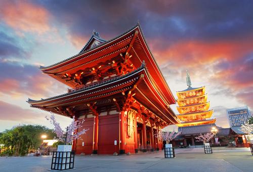 Tokyo City Travel Briefing