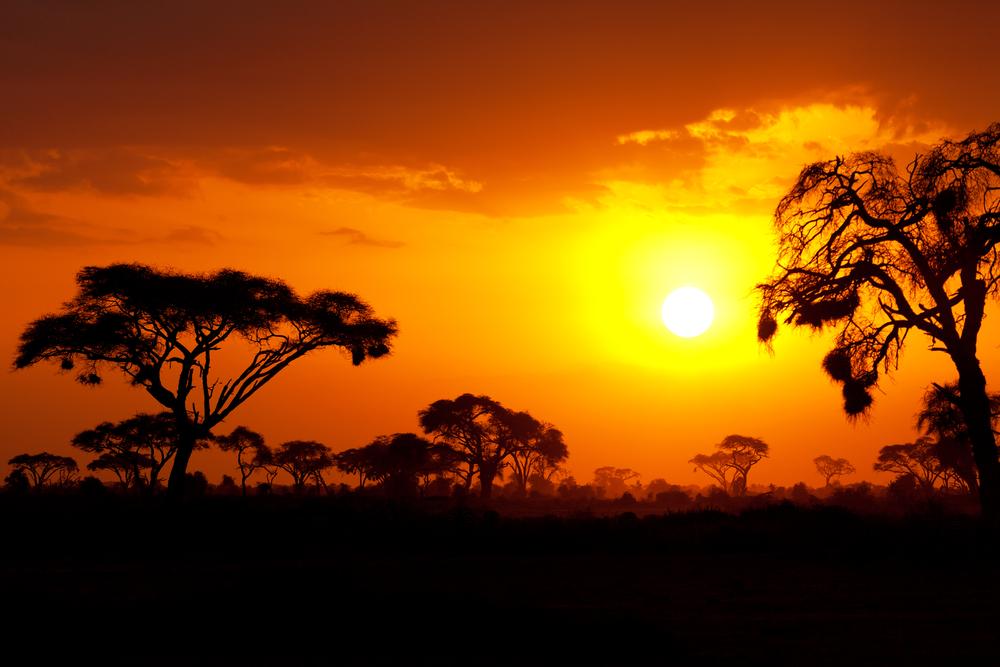 Rewarding time for Itravelafrica