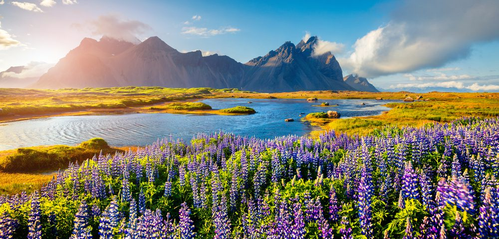 Etiquette guide to help keep Iceland a nice land