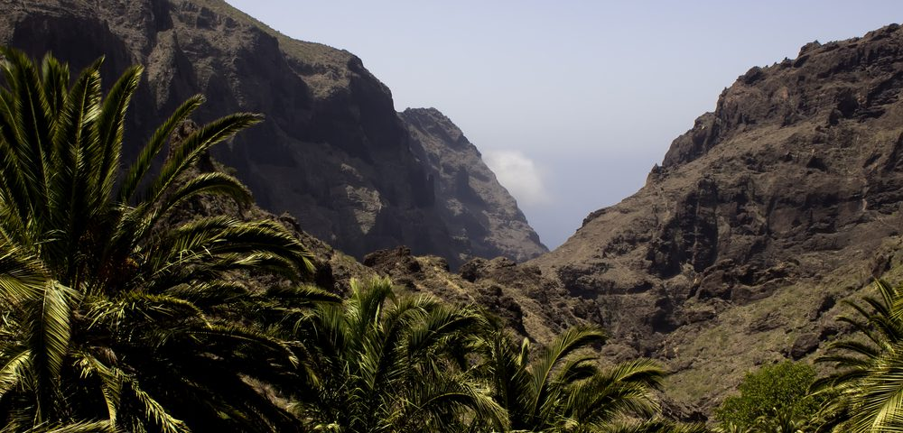 More Flights To St Helena