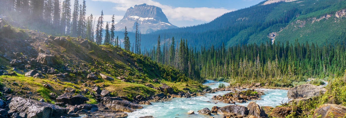 Loving National Parks to Death?