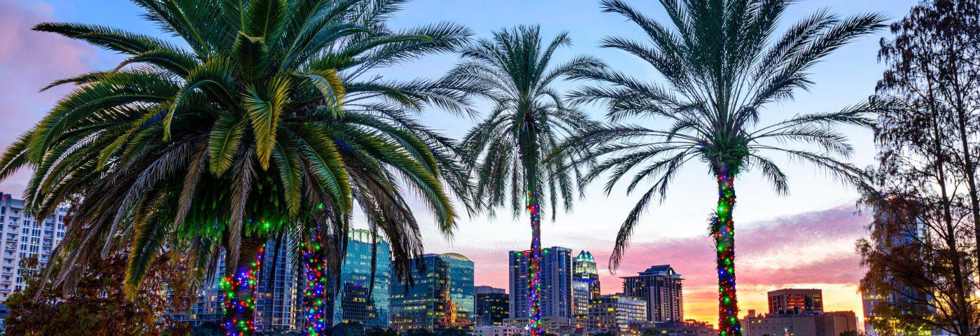 Orlando blooms