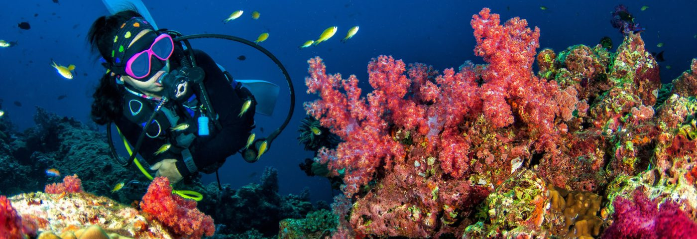 Windjammer Landing Villa Beach Resort launches Unique and Exclusive Underwater Breathwork Programme