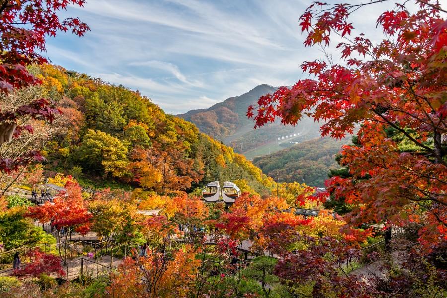 South Korea untact travel