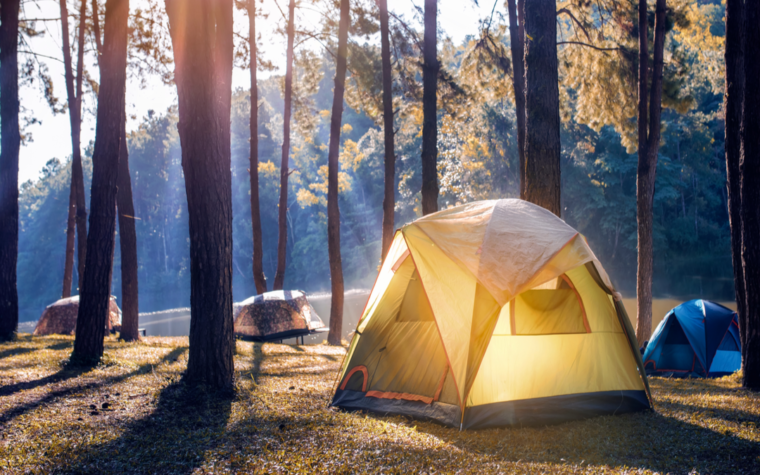 UK camping holiday trends