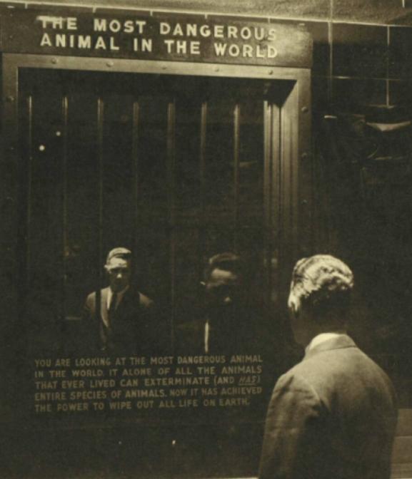 1963 exhibit