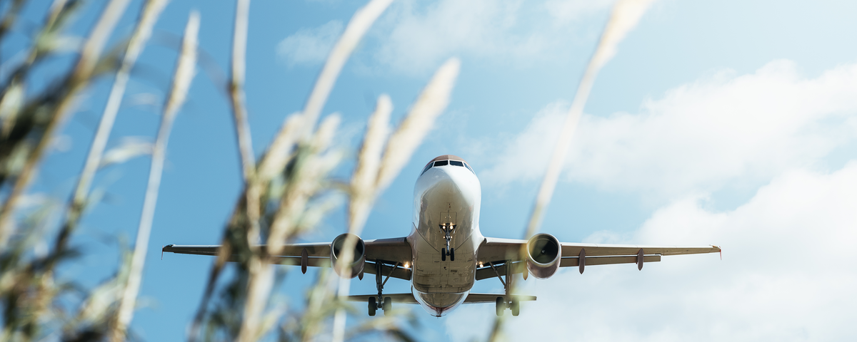 Why Decarbonising Aviation matters and is urgent