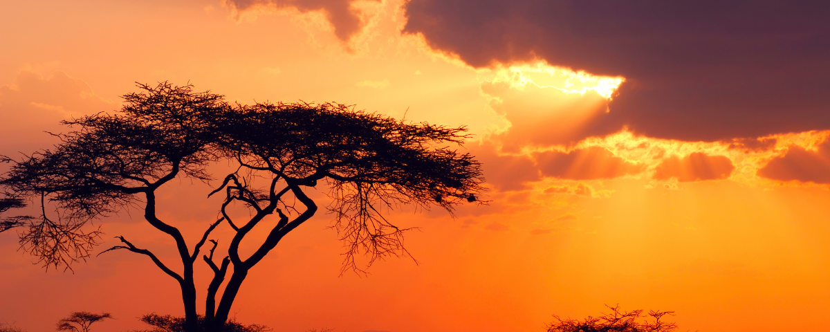 We tell the wrong stories about Africa